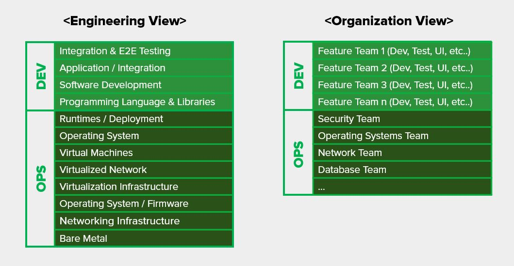 Engeering & Organization View