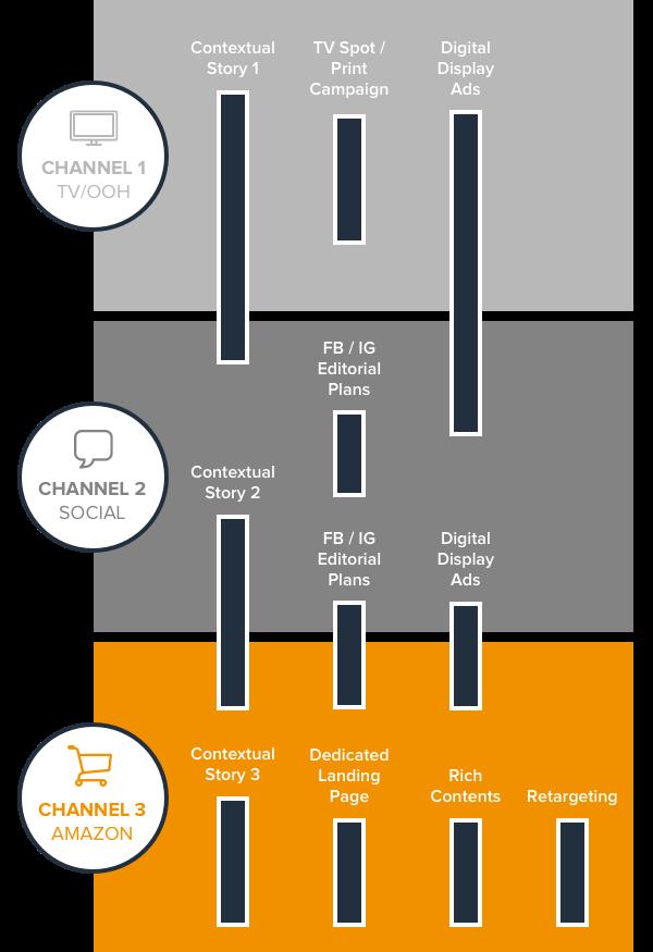 amazon infografica