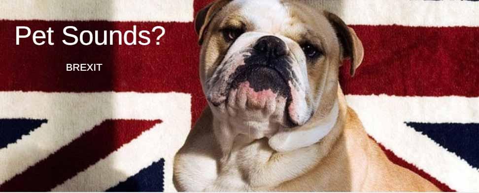 Brexit: PetSounds by Oscar McCarthy