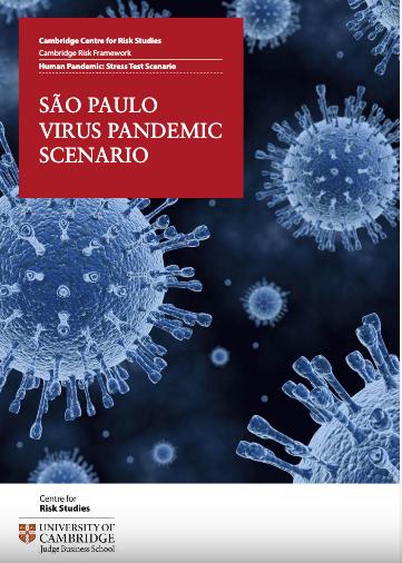 Sao Paulo Virus Pandemic Scenario