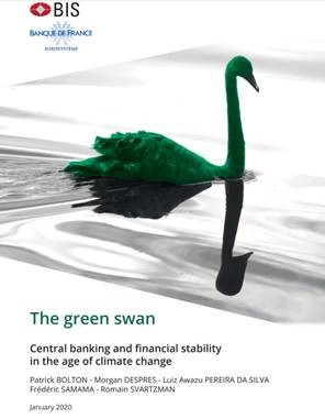 the green swan book